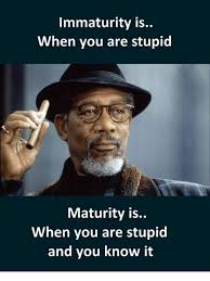 Memes Are Stupid - immaturity is when you are stupid maturity is when you are stupid