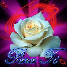 imagenes para enamorar con flores hermosas flores para enamorar ramos de flores para cumpleaños