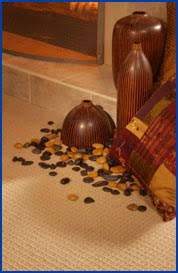 Capture Carpet And Rug Dry Cleaner Carpet Stain Removal Instructions