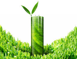 scientists make eco friendly batteries out of leaves inhabitat