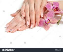 beautiful hand perfect nail french manicure stock photo 71354446