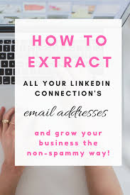 Business Email Addresses List by Mailchimp Vs Convertkit Growing Your List To 5000 And Which Is