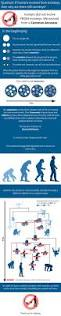 23 best images about evolution lessons for middle or high
