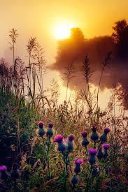 500px Scottish Sunrise By David Mould On 500px Wanderlust