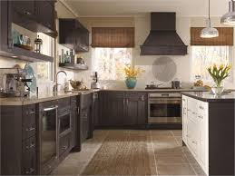amazing kitchen craft cabinets 32 about remodel home design ideas