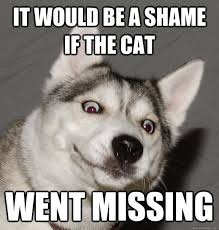Funny Dogs Memes - funny dog memes for canine lovers sayingimages com