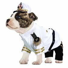 Halloween Dogs Costumes Dog Costume Navy Admiral Military