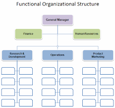 Organisational Chart Template free organizational chart template company organization chart