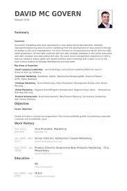 Digital Marketing Resume Sample by Vice President Marketing Resume Samples Visualcv Resume Samples