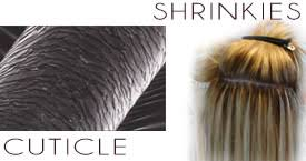 shrinkies hair extensions best cuticle hair extensions photos 2017 blue maize