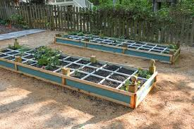 How To Build A Planter by How To Build A Rot Resistant Raised Planter Bed Pretty Handy