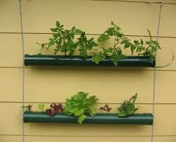 plant gold dipped hanging planters beautiful wall planters gold