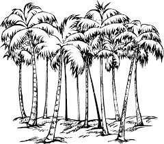 palm tree 26 nature u2013 printable coloring pages