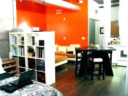 Wall Dividers For Studios Room Divider Ideas Studio Cool S Bedroom