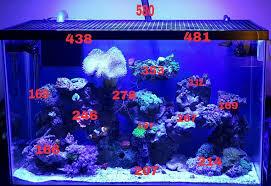 sb reef lights review par for sb reef light reef2reef saltwater and reef aquarium forum