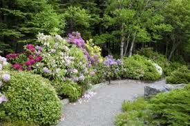 vialetti in ghiaia o pavimentazione per il vialetto in giardino