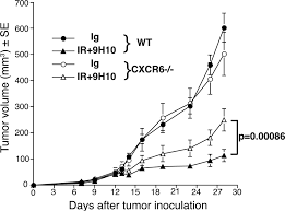 radiation induced cxcl16 release by breast cancer cells attracts