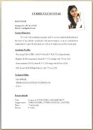 simple job resume format pdf professional job application resume format pdf sle cv pdf gse