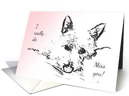 31 best westie greeting cards and products by gingcard designs