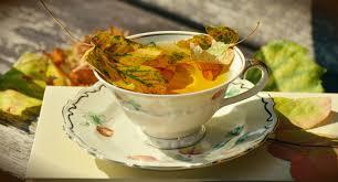 plat d automne cuisine images gratuites livre plat repas aliments produire l