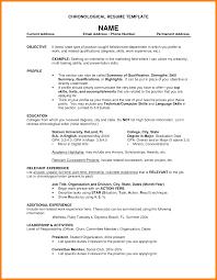 Sample Buyer Resume by Sales Executive Cv Example Buyer Resume Sample Template Example