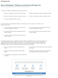 cell transport worksheet answers worksheets