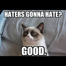 Haters Gonna Hate Meme - 36 best haters gonna hate images on pinterest funny stuff ha ha