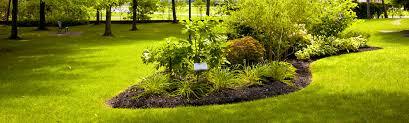garten und landschaftsbau erfurt bepflanzung und pflege grünbau erfurt garten und