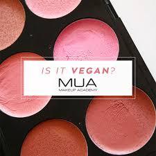 Makeup Mua is makeup academy mua vegan ethical elephant