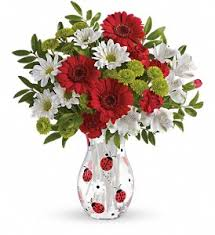 same day delivery flowers local florist same day delivery flowers dundee and genoa