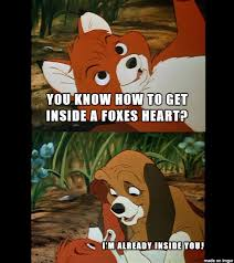 Furry Meme - furry memes meme on imgur