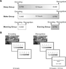 processing of emotional reactivity and emotional memory over sleep
