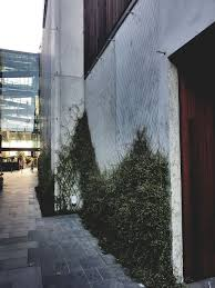 get a sustainable foliage facade with green screen srs group