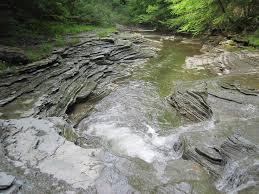 chautauqua creek gorge state forest westfield western new york