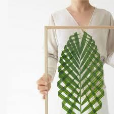 plants at home u2013 wishlist sarah le donne blog