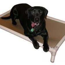 decor deep den dog bed black for indestructible dog bed ideas and