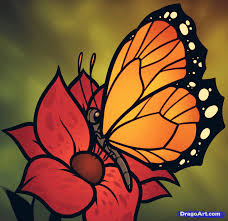 learn how to draw a butterfly on a flower butterfly and flower
