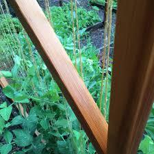 Cedar Trellises Cedar Trellis U2014 Portland Edible Gardens Raised Garden Beds
