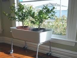 window planters indoor download window box planters indoor plans free indoor flower box