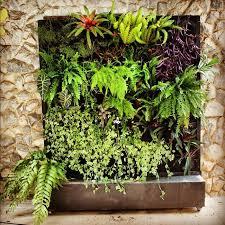 vertical gardens an