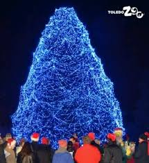 when does the lights at the toledo zoo start toledo zoo needs your vote for the lights
