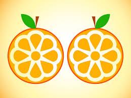 oranges clipart black and white orange clipart black and white orange fruit clip art