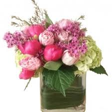 Peonies Delivery Peonies Flower Delivery In Dallas Send Peonies Flowers In Dallas
