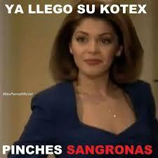 Soraya Montenegro Meme - a donde vamos a parar meme awesome images soraya montenegro