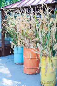 thanksgiving outdoor decorations best 25 corn stalks ideas only on pinterest corn stalk decor