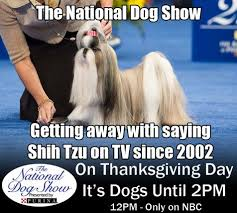 national show themed meme contest set for thanksgiving