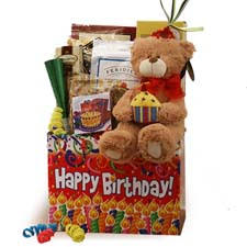 birthday baskets for specialty gift baskets for all occasions children s gift baskets