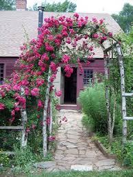 Build A Rose Trellis Best 25 Rose Trellis Ideas On Pinterest Trellis Ideas Trellis