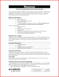 Seeking Titles Fresh Titles For Resumes Resume Pdf