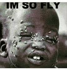 Fly Meme - im so fly meme on me me